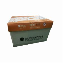 传美彩色复印纸 A5 80G  浅黄色 单包装  20包/箱