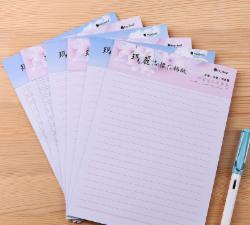 文稿信纸作文本18K非A4双线行本